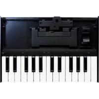 Клавиатура ROLAND K-25m